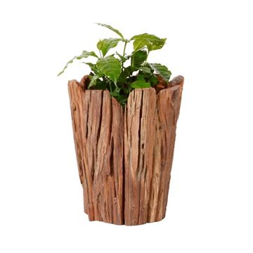 Picture of Wooden Flower Pot 30 cm