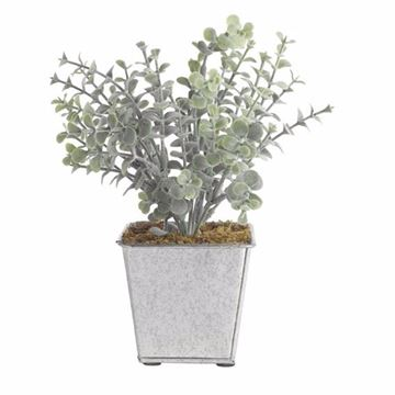 Picture of Decorative Flower with Pot