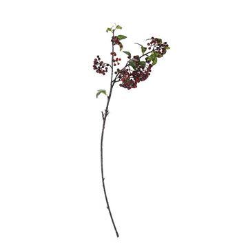 Resim Dut Dali Koyu Kirmizi Dekoratif Çiçek