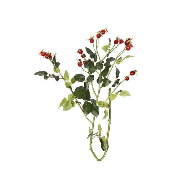 resm Kuşburnu Dekoratif Çiçek