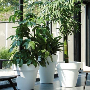 Picture of Pure Round Pot White 55x68 cm