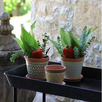 Resim Pueblo Çiçeklik Açık Yeşil 13x13 cm