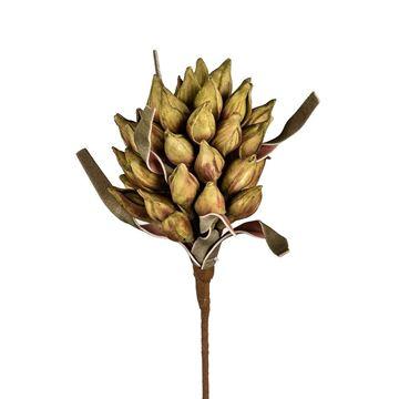 Resim Dekoratfi Ejder Çiçeği