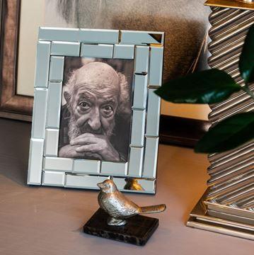 Resim Gümüş Kuş Aksesuar